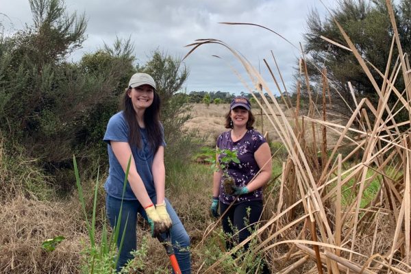 Planting at Marie Neverman Reserve by Megan Price6